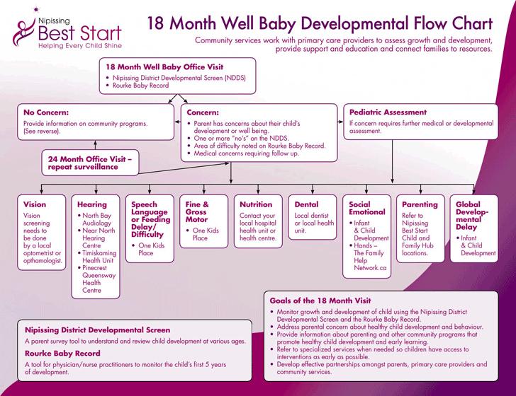 Baby development chart template free download speedy template 18 month well baby developmental flow chart maxwellsz