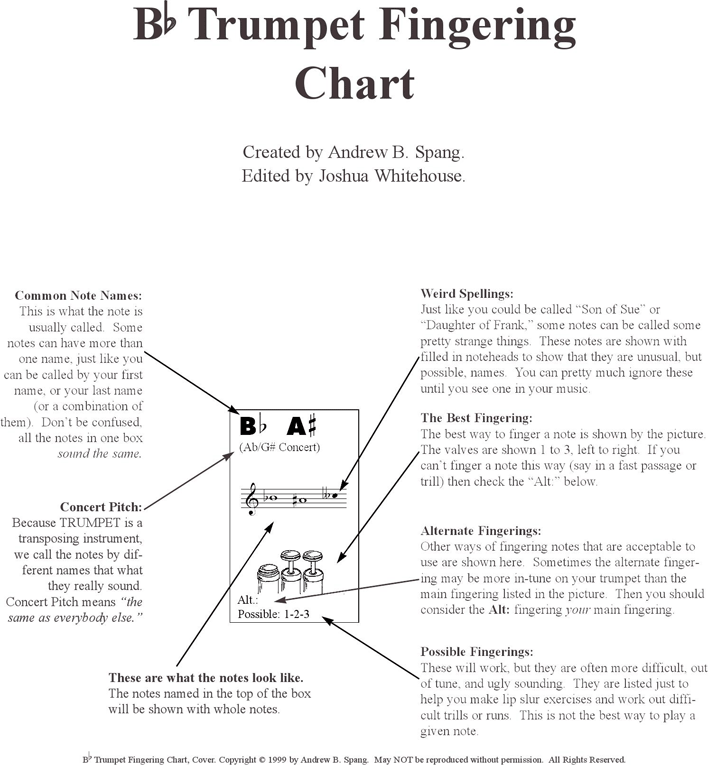 Free Bb Trumpet Fingering Chart - PDF   44KB   3 Page(s)   Page 3