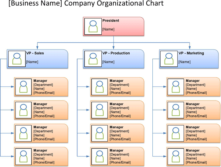 organizational chart template template free download speedy template