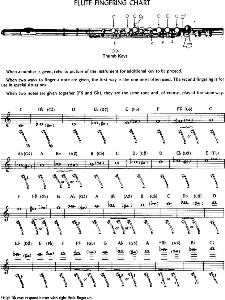 Free Flute Fingering Chart - PDF | 55KB | 2 Page(s)