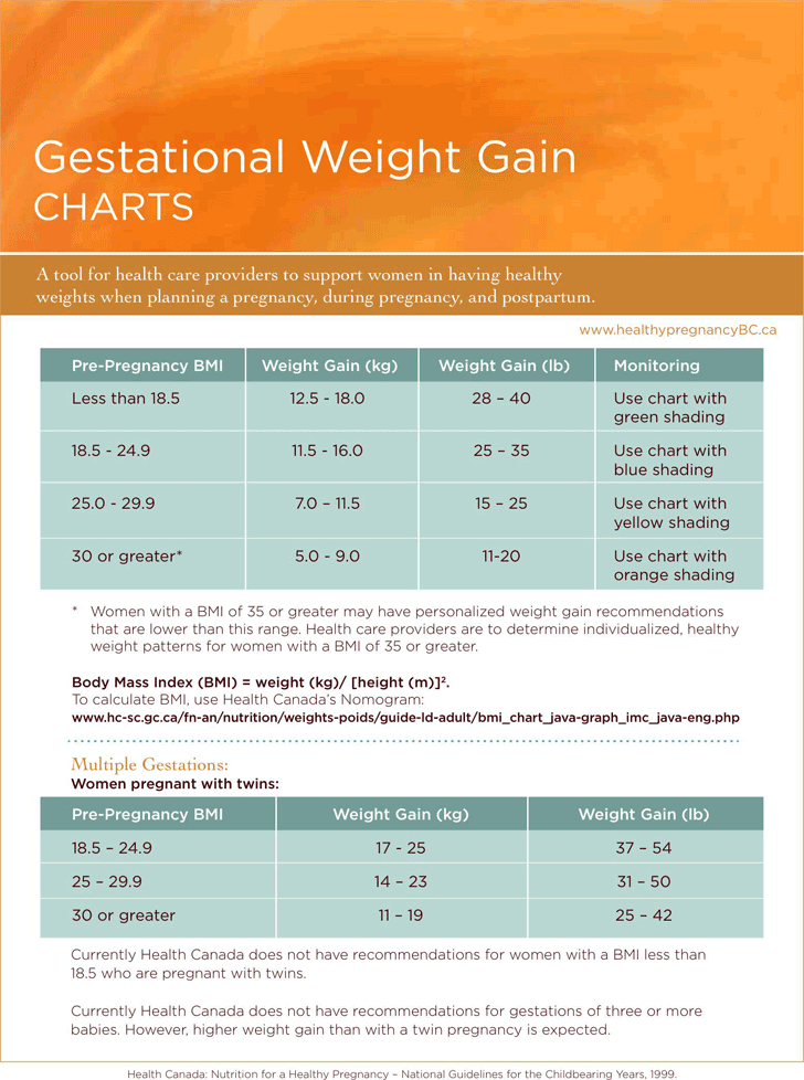 Pregnancy Weight Gain Chart Template Free Download Speedy Template