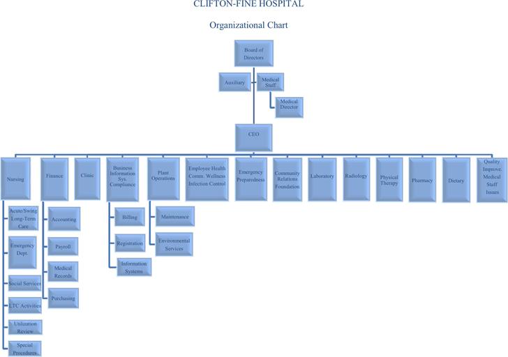Board of directors organizational chart template vaydileforic board of directors organizational chart template maxwellsz