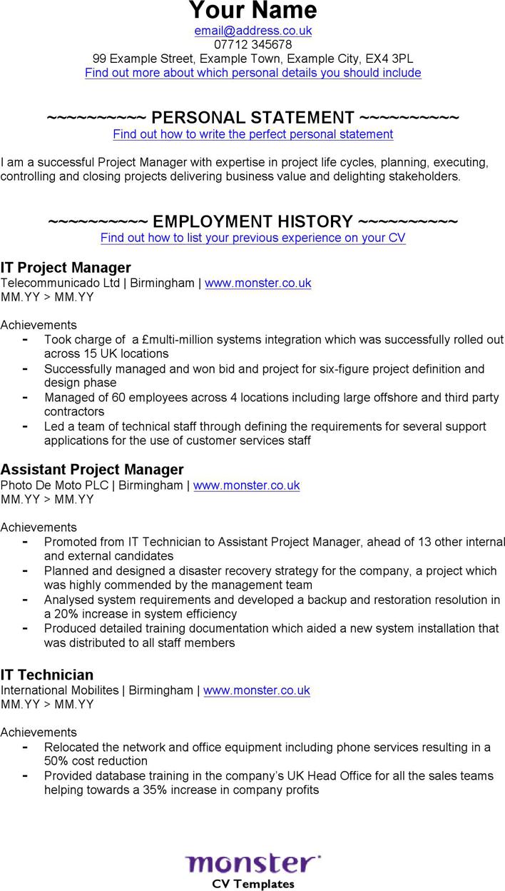 Pag Sample Program Manager Resume