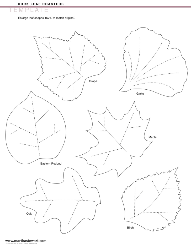 Leaf Template Template Free Download Speedy Template