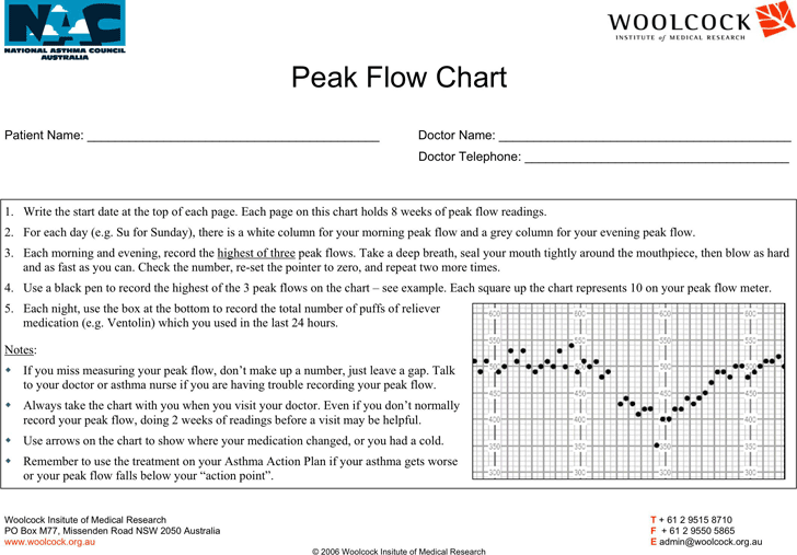 Peak Flow Chart | Peak Flow Chart Template Free Download Speedy Template