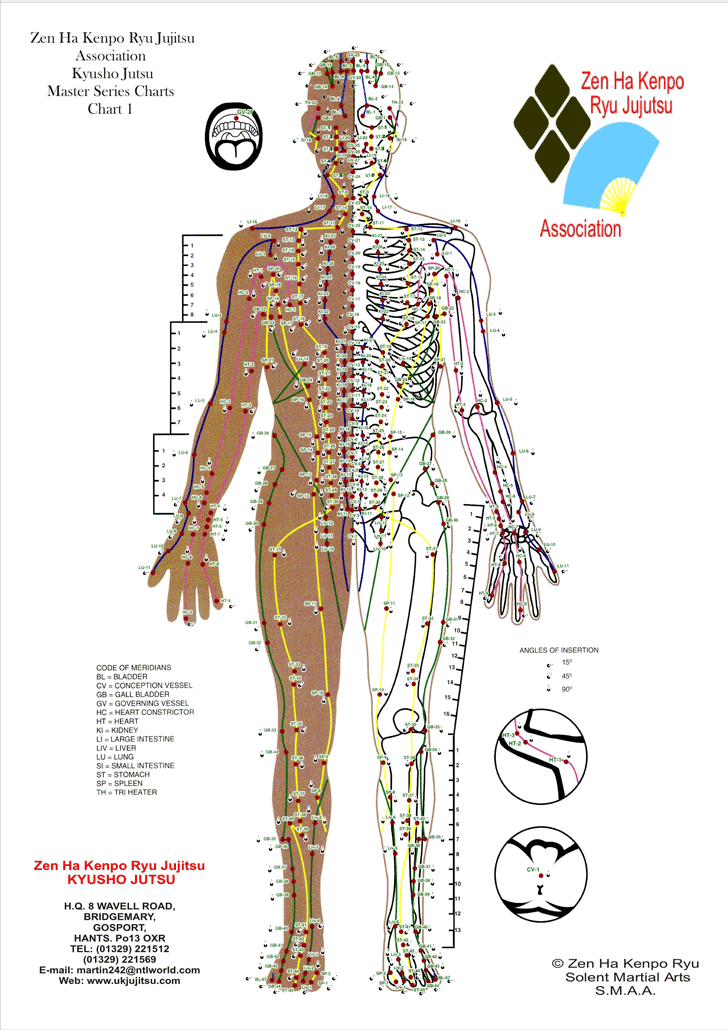Pressure Point Chart Template Free Download Speedy Template