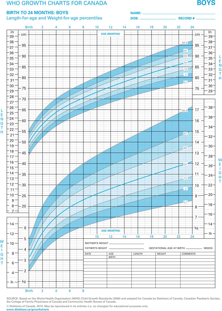 Boys Growth Chart Template Free Download – Puppy Growth Chart Template